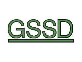 GSSD mbH
